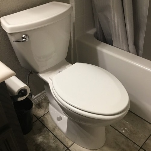A Toilet Just After Professional Toilet Repair